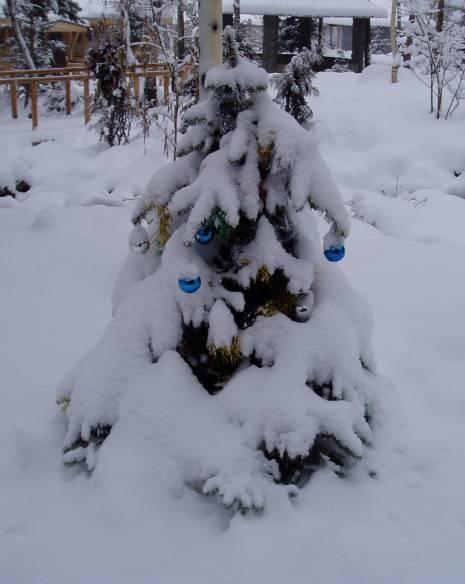 Paqui Alamillo (Almaty / Kazajstán)
