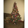 Norma Patricia G�mez's Christmas tree from Lima / Per�