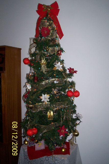 Eusebio, Beatriz y Claudia's Christmas tree from Uruguay