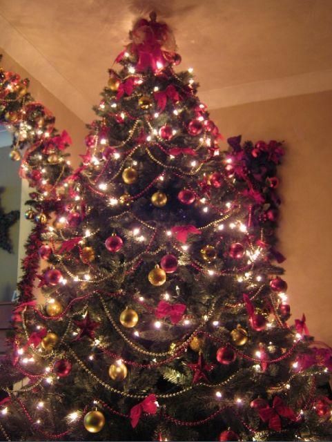 Weihnachtsbaum England.Weihnachtsbaum Von Ben Randles Bristol England United Kingdom