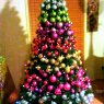 Nikki Youngman's Christmas tree from Brisbane, QLD, Australia