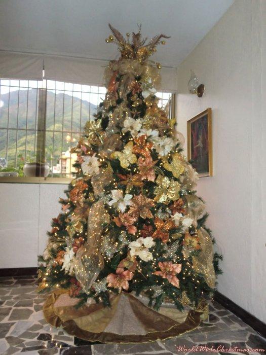 Roxana Castillo (Caracas, Venezuela)