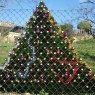 Julio Naves Cuesta's Christmas tree from Asturias, Espa�a