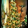Judith Hernandez's Christmas tree from Philadelphia, PA, USA