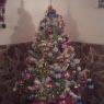 Rita Gonz�lez Santana's Christmas tree from Las Palmas de Gran Canaria, Espa�a