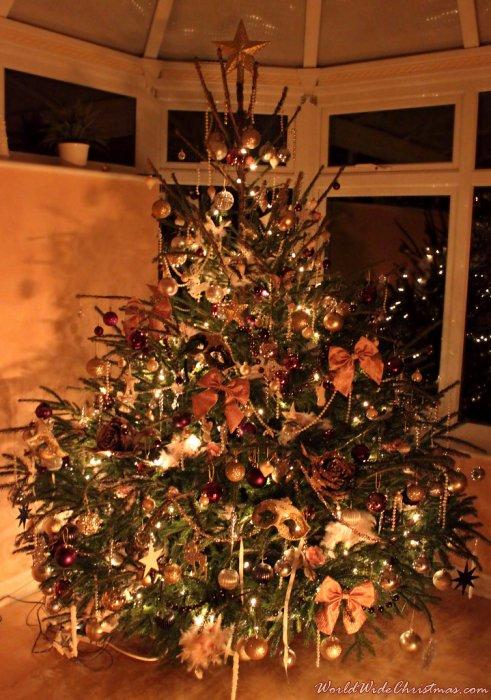 Sophie eloises christmas tree from england uk sophie eloise england uk sciox Image collections