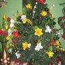 familia Salazar Ruiz's Christmas tree from Caracas, Venezuela
