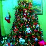 Flia. Chankaji Betancourt's Christmas tree from Monagas, Venezuela