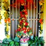 Ana F. H. Carmona (Maria)'s Christmas tree from Santo Domingo, Rep�blica Dominicana