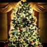 Domi Mondon's Christmas tree from Columbus, OH, USA