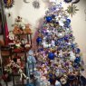Arialprisss's Christmas tree from M�xico DF, M�xico