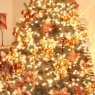 Ana Maria Bueno's Christmas tree from Florida, EEUU