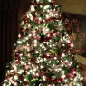 DJ Mikes's Christmas tree from Wernersville, PA, USA