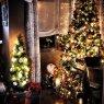 �rbol de Navidad de Alejandra S�nchez Natera (C�diz, Espa�a)