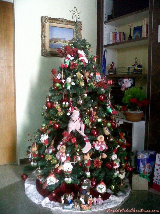 Kenya's Christmas tree from Caracas, Venezuela