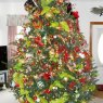 Jerry & Melanie Storey's Christmas tree from Murfreesboro, NC, USA