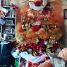 Familia Strauss's Christmas tree from Maracay, Aragua, Venezuela