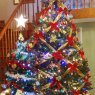 Sandy Galetovic's Christmas tree from Mohegan Lake, NY, USA