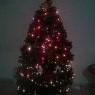Weihnachtsbaum von Angélica  (Mazatlán Sinaloa, México)