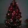 Angélica 's Christmas tree from Mazatlán Sinaloa, México