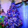 Gertrudis Zamudio's Christmas tree from Alvarado, Veracruz, México