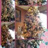Damaris Cruz's Christmas tree from Lakeland, Florida, USA