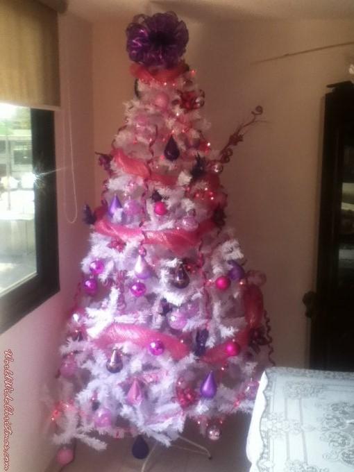 Pink Dream (Mexico DF)