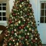 Weihnachtsbaum von Bony (Belle Glade, FL, USA)