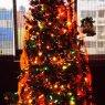Luis Ramirez Alam's Christmas tree from México D.F., México
