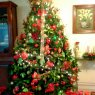 Weihnachtsbaum von Jorge Reyes Méndez (Xalapa, México)