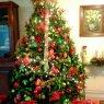 Jorge Reyes Méndez's Christmas tree from Xalapa, México