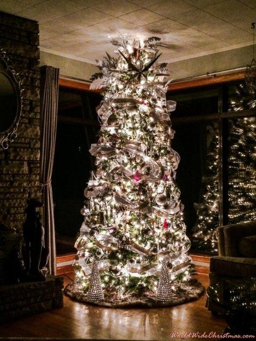 Brandon - Waterford & Swarovski Holiday Glam (Johnson City, TN, USA)