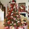 Vicky Camargo's Christmas tree from Summerville, SC, USA