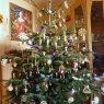 Andreas Pfau's Christmas tree from Friedrichshafen , Deutschland