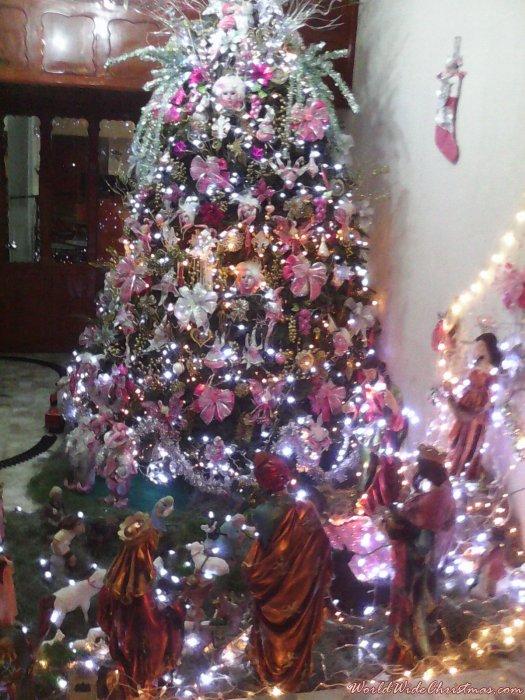 maria del carmen perez castro (veracruz, mexico)