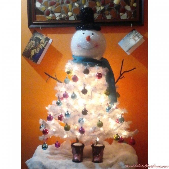 Cute Snowman  (Saint Louis, MO, USA)