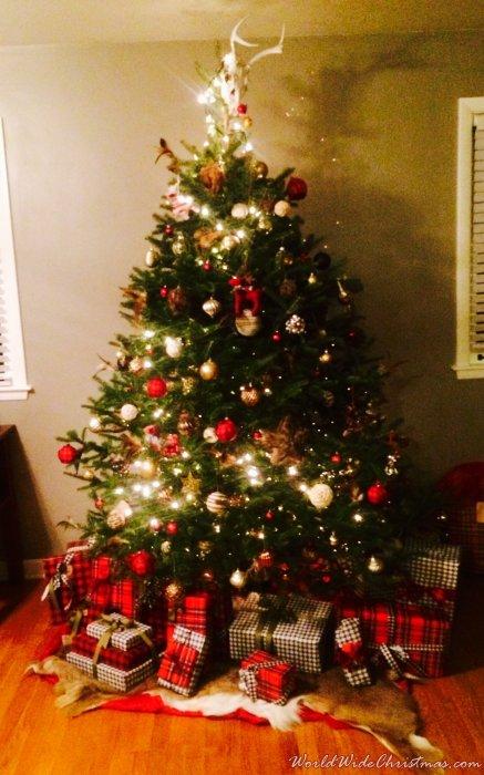 Deer in Christmas Lights (Pittsburgh, PA, USA)
