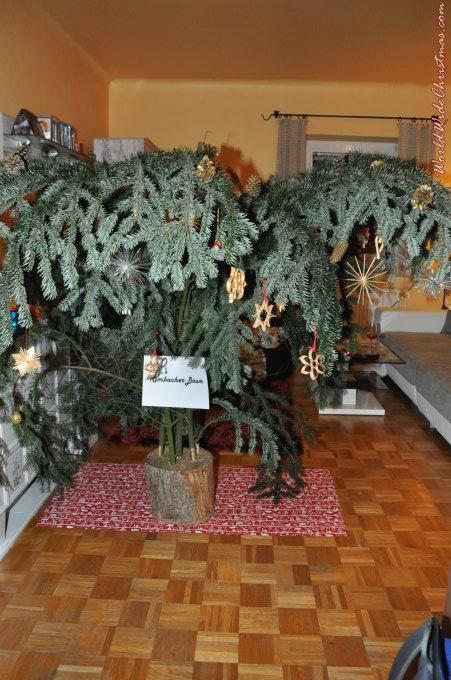 österreich Weihnachtsbaum.Weihnachtsbaum Von Martin Kimbacher Steyr österreich