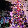 Xavier & Linda Sacta Tree 's Christmas tree from New York