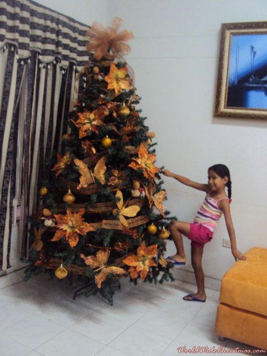 Navidad otoñal (Cucuta, Colombia)