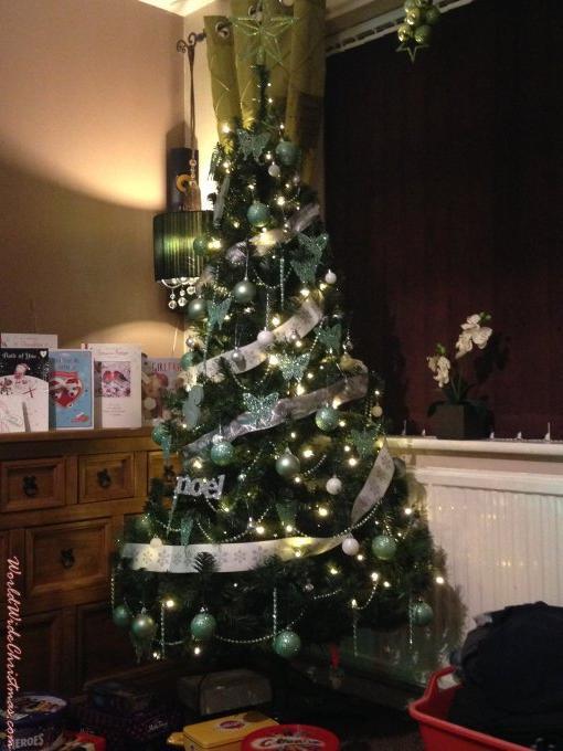 The sassy Tree (Derby, England, U.K. )