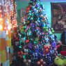 Miriam's Christmas tree from M�xico D.F., M�xico