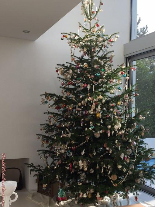 Antique tree, Christmas capital Strasbourg/France (Strasbourg, France)