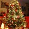 Árbol de Navidad de Alex Panagiotopoulos (Rodos, Greece)
