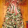 Tami Lovins's Christmas tree from Clayhole Kentucky