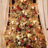 Steve trowles's Christmas tree from England, bury st edmunds, Suffolk