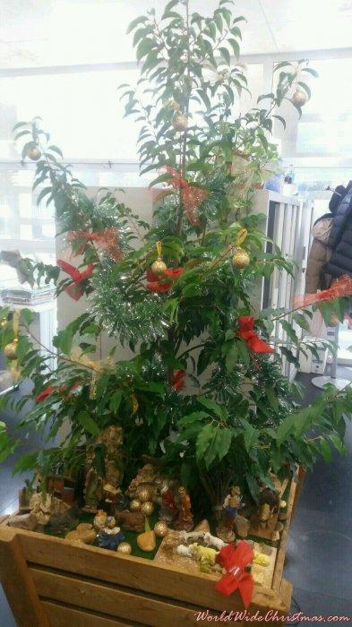 III MILENIO CHRISTMAS TREE (EL PERI, MÉRIDA)