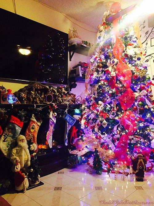 Xavier & Linda Sacta 9ft  Christmas Tree (Queens, NY, USA)