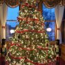 Do Warren Hoyse's Christmas tree from Warrenton,  Oregon, USA