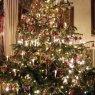 Miro 's Christmas tree from Schweighofen, Deutschland